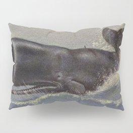 Vintage Sperm Whale Painting (1909) Pillow Sham