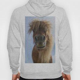 Ponymonster Hoody