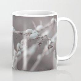 White Snails Beautiful Capture Of Nature Coffee Mug