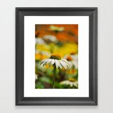 Summer Impressions Framed Art Print