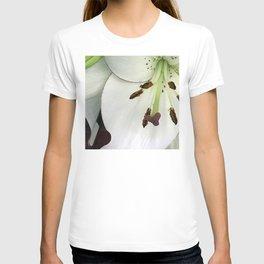 Pearl-Alabaster Star Lily Close-Up, Macro Photo T-shirt