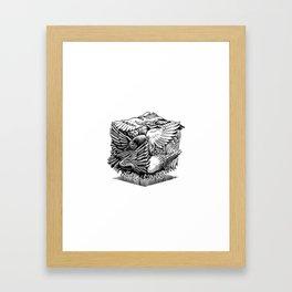 Pigeon Cube Framed Art Print