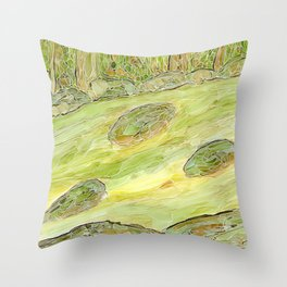 Eno River 22 Throw Pillow