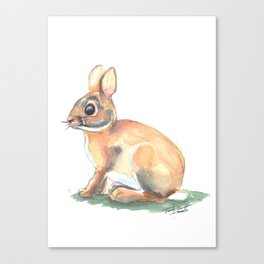 Ivy's Bunny Canvas Print