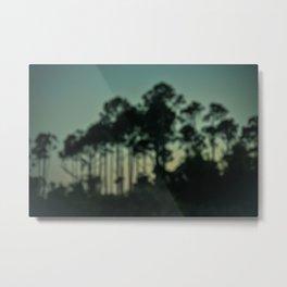 Evening on the Florida Coast Metal Print