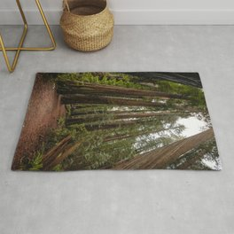 Redwood Forest Adventure VII - Nature Photography Rug