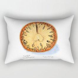 Aegle Marmelos Rectangular Pillow