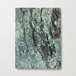 A side of moss Metal Print