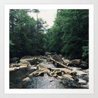 Creek. Art Print