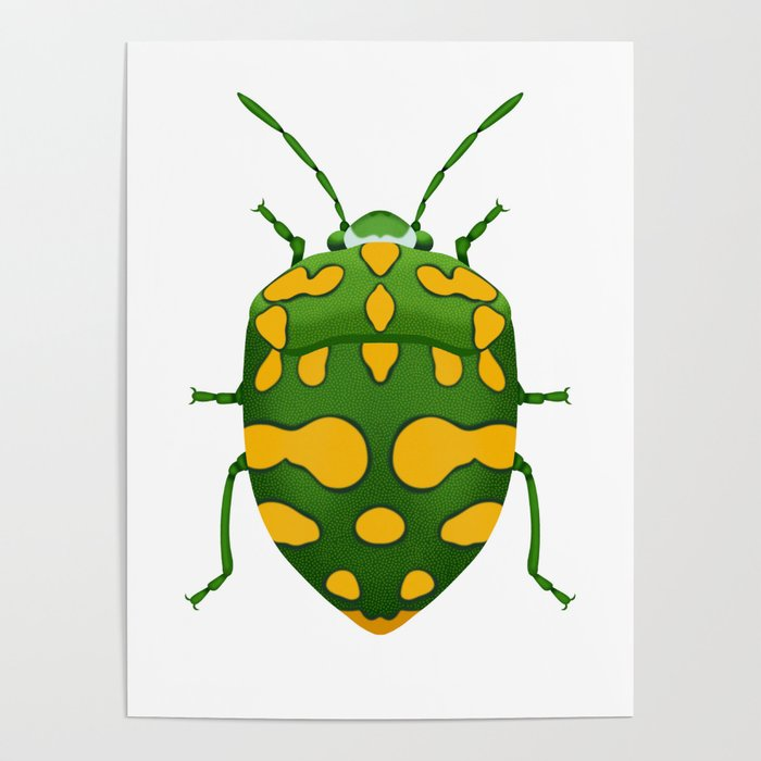 Physic Nut Stink Bug Poster