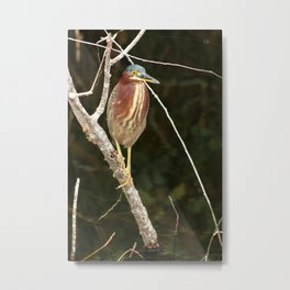 Just Sit Here And Wait Metal Print