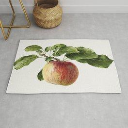 Vintage apple Rug