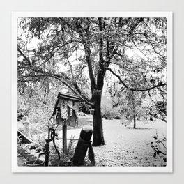 Winter Beginnings Canvas Print