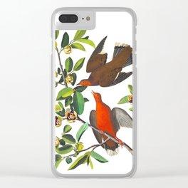 Zenaida Dove Clear iPhone Case