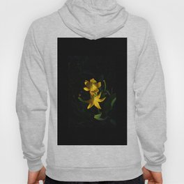 Glacier National Park, Glacier Lilies, Botanical Photography, Floral Print, Yellow Flowers Hoody