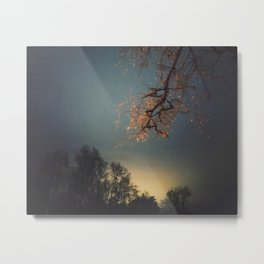 Airglow Metal Print