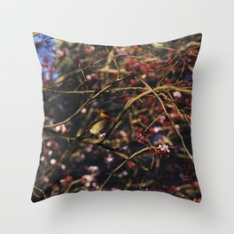 Robin in Cherry Tree Throw Pillow