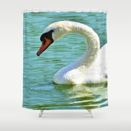 Beautiful White Swan Swimming On Rawhide Lake Texas Shower Curtain