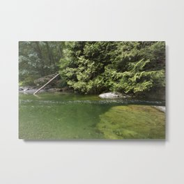 Waterhole in the Forest Metal Print