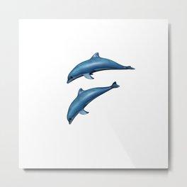 Anisue's Dolphin. Metal Print