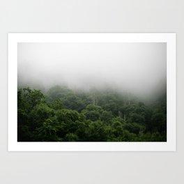 The Great Smoky Mountains Art Print