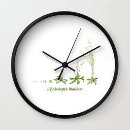Arab Wall Clock