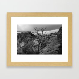 Withered Tree on top of Mountain Range, Big Bend - Landscape Photography Framed Art Print