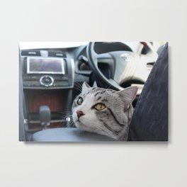 Cat tells the arrival Metal Print