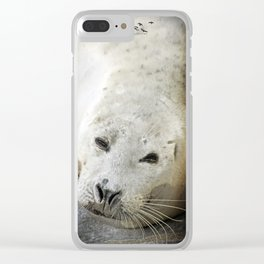 Cheese Clear iPhone Case