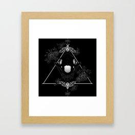 Bear Skull And Deathheads Framed Art Print