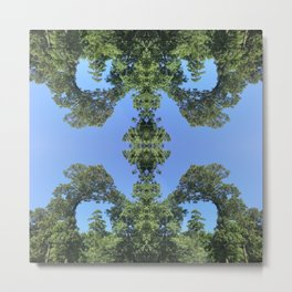 Blue Sky and Green Tree Are Friends Metal Print