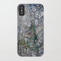 plant iPhone & iPod Cases featuring plant by gasponce
