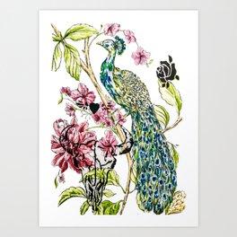 Peacock punk stencilled Art Print