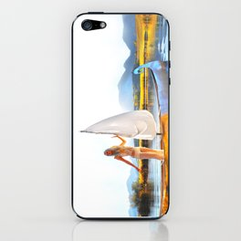 Light Sets Sail iPhone Skin