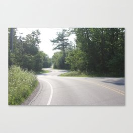 Winding Road through Woods Canvas Print