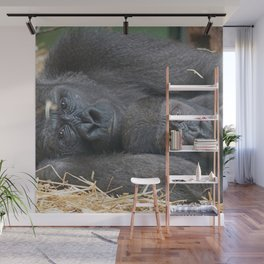 Two Gorillas 1115P Wall Mural