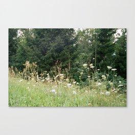 Wildflowers 1 Canvas Print
