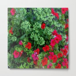 Red Petunia Flowers Green Sedum Flora Art Metal Print