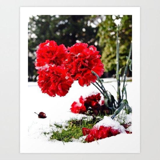 Frost flowers Art Print