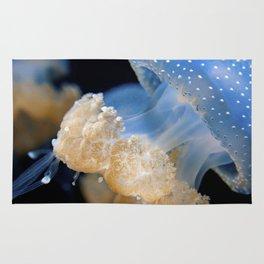 Underwater Macrophotography - Jellyfish Rug