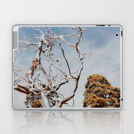 branching Laptop & iPad Skin