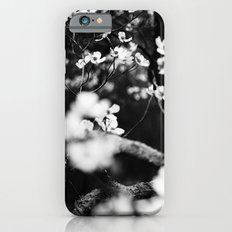 Surrounded by Dreams B&W Slim Case iPhone 6s