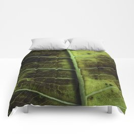 Leaf two Comforters