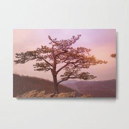 Virginia Sunrise Metal Print