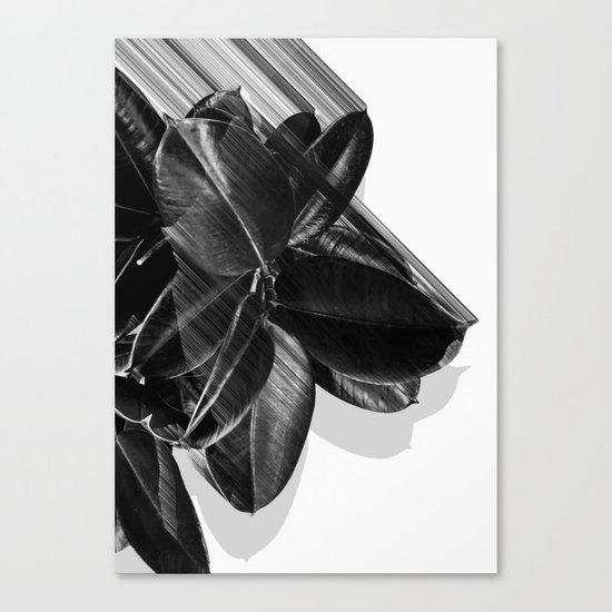 We Crush Canvas Print