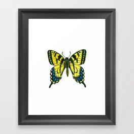 Tiger swallowtail butterfly watercolor and ink Framed Art Print
