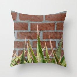 cactus and brick wall Throw Pillow