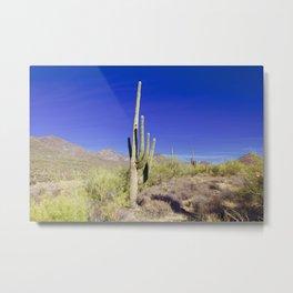 Carefree Cactus Metal Print