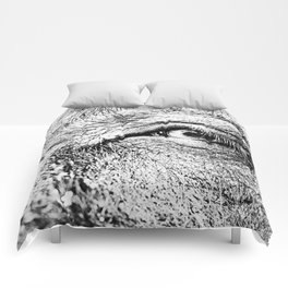 Look at me! Comforters