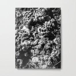 Earthy Grit Metal Print